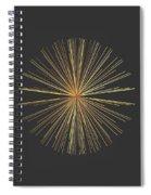 Spikes... Spiral Notebook