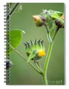 Spiky Green Wild Flowers Spiral Notebook