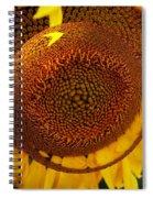 Spin It Spiral Notebook