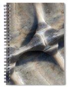 Spine Spiral Notebook