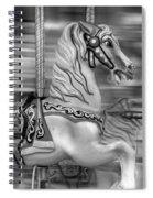 Spinning Horses Spiral Notebook