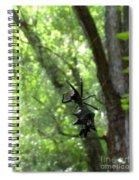 Spiny Orb Weaver Spiral Notebook