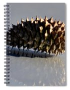 Spiny Reflections Spiral Notebook