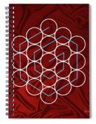 Spiral Of Evolution Expand Your Perception  Spiral Notebook