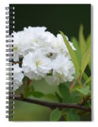 Spirea Blossom Spiral Notebook