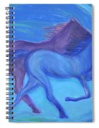 Spirit Guide By Jrr Spiral Notebook