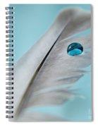 Spirit Guide Spiral Notebook