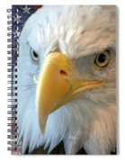 Spirit Of America Spiral Notebook