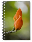 Spirit Of Spring Spiral Notebook