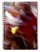Spirits 4 Spiral Notebook