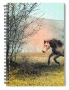 Spiritus Equus Spiral Notebook