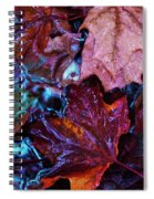 Splash Down Spiral Notebook