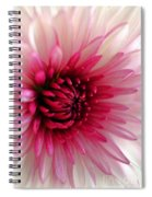 Splash Of Pink Spiral Notebook