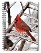 Splash Of Red Spiral Notebook