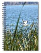Splashing In The Lake Spiral Notebook