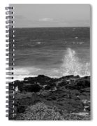 Splashing On The Shore Spiral Notebook