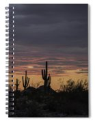 Splender At Sunset Spiral Notebook