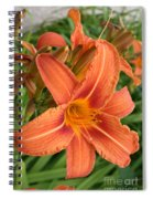 Splendid Day Lily Spiral Notebook