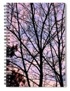 Splendid Silhouette Spiral Notebook