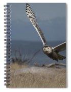 Splendor Of Flight Spiral Notebook