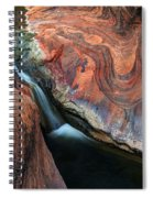 Splendor On Quail Creek Spiral Notebook