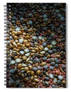 Split Pea Abstract Spiral Notebook