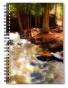 Split Rock River Spiral Notebook