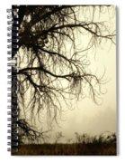 Spooky Tree Spiral Notebook