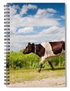 Calf Walking In Natural Landscape  Spiral Notebook