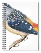 Spotted Diamondbird Spiral Notebook