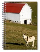 Spotted Donkey Looks Uninterested Spiral Notebook
