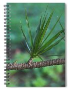 Spotted Dove Spiral Notebook