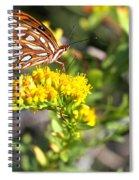 Spotted Gulf Fritillary Spiral Notebook