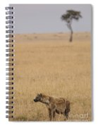 Spotted Hyena Spiral Notebook