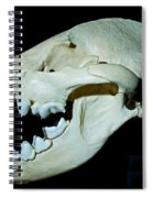 Spotted Hyena Spiral Notebook