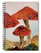Spotted Mushrooms Spiral Notebook