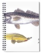 Spotted Seatrout And Rattlin' Minnow Fly Spiral Notebook