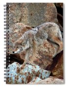 Spotting Prey Spiral Notebook