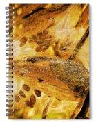 Spray Of Sienna Spiral Notebook