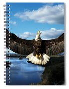 Spread Eagle  Mississippi River Spiral Notebook