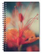 Spread The Love Spiral Notebook