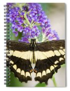 Spread Your Wings My Little Butterfly  Spiral Notebook