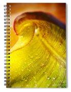 Sprial Leaf Spiral Notebook