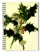 Sprig Of Holly With Berries And Flowers Vintage Poster Spiral Notebook