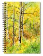 Spring Aspens Spiral Notebook