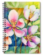 Spring Ballerinas Spiral Notebook