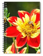 Spring Bee Spiral Notebook