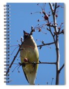 Spring Bird Singing Spiral Notebook