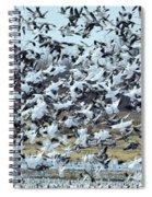 Spring Blizzard Spiral Notebook
