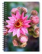 Spring Bloom Spiral Notebook
